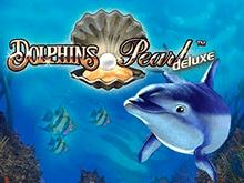 Онлайн аппарат Dolphin's Pearl Deluxe